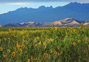 Great Sand Dunes National Park in Colorado / Facebook